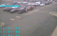 Police Release Video of Purse Snatching to Help ID Suspect